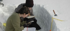 Pennask Summit Research with UBC Students